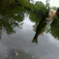 San Antonio Ponds Fishing Report 05/11/2017