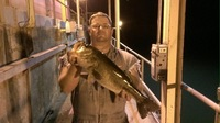 Off the Water Fishing Report 07/07/2017