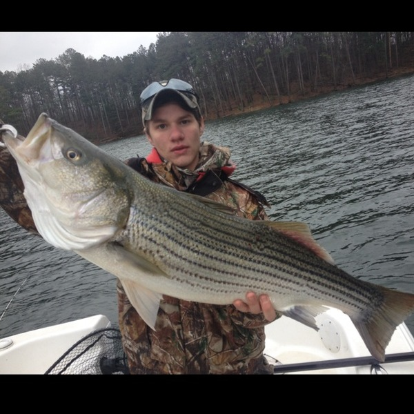 Carters lake fishing reports fishingscout mobile app for Georgia fishing report