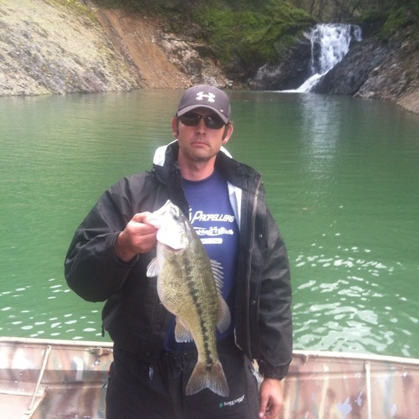 Shasta lake fishing reports fishingscout mobile app for Lake skinner fish report
