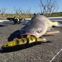 O.H. Ivie Lake Fishing Report 08/17/2014