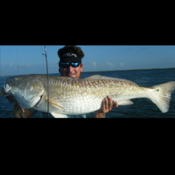 Red redfish drum matagorda bay tx fishingscout for Matagorda fishing guides
