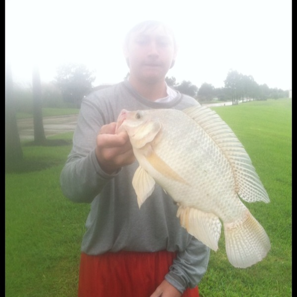 Friendswood Ponds Fishing Report 09/21/2013