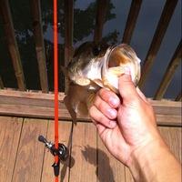 Tyler Ponds Fishing Report 05/29/2014