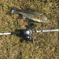 LNVA Canal and Ponds Fishing Report 01/18/2016