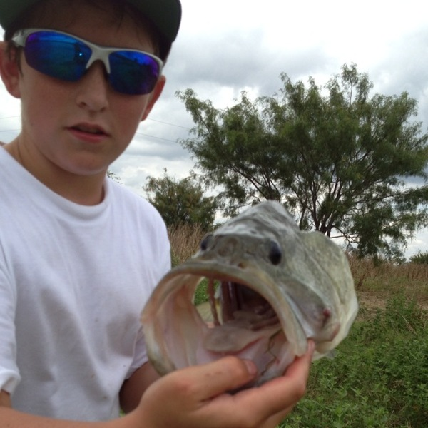 Rowlett Ponds Fishing Report 08/14/2013