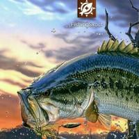 Caddo Lake Fishing Report 01/16/2015