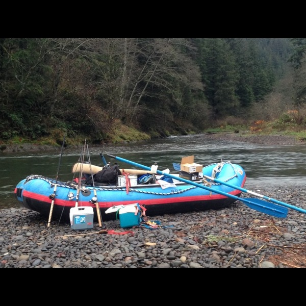 Chinook king salmon wilson river or fishingscout for Wilson river fishing report