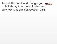 Spring Creek Fishing Report 06/19/2016