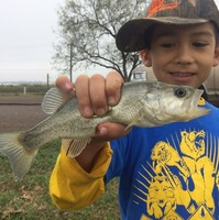 Other Freshwater Fishing Report 12/18/2016