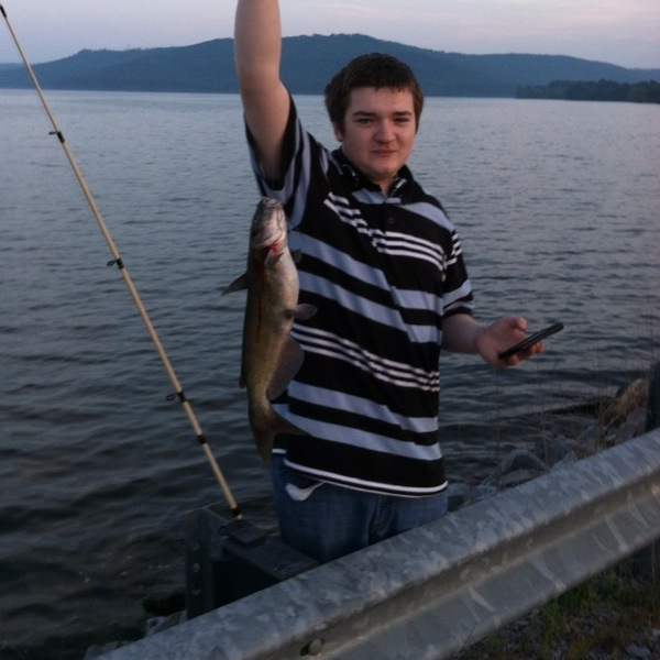 Channel catfish lake guntersville al fishingscout for Guntersville fishing report