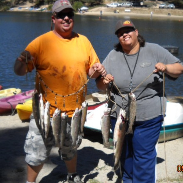 Rainbow Trout Big Bear Lake Ca Fishingscout