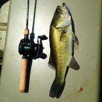 Oakwood Ponds Fishing Report 07/03/2014
