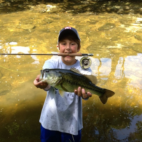 Highland Park Ponds Fishing Report 06/20/2013