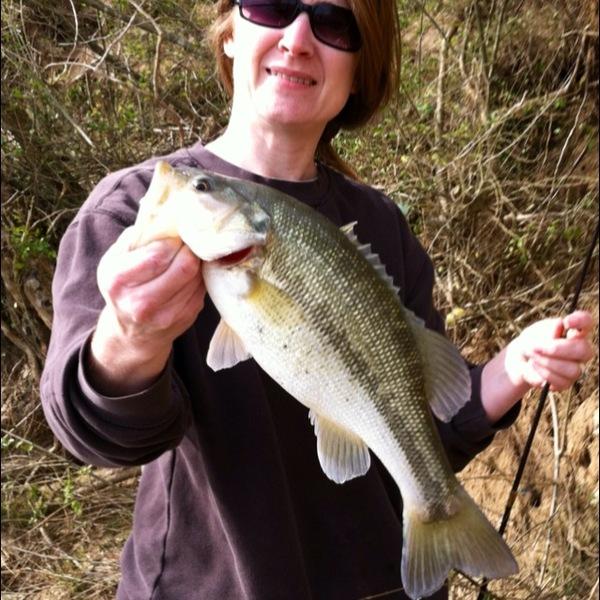 Spotted bass lake guntersville al fishingscout for Lake guntersville fishing hot spots