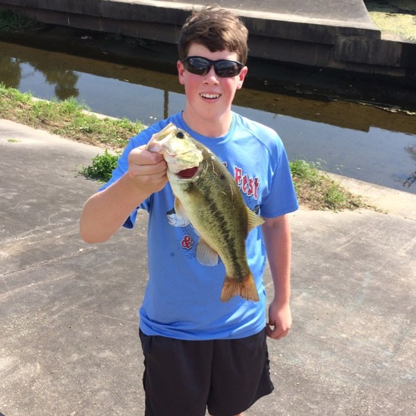 Largemouth bass lafreniere park la fishingscout for Louisiana bass fishing reports