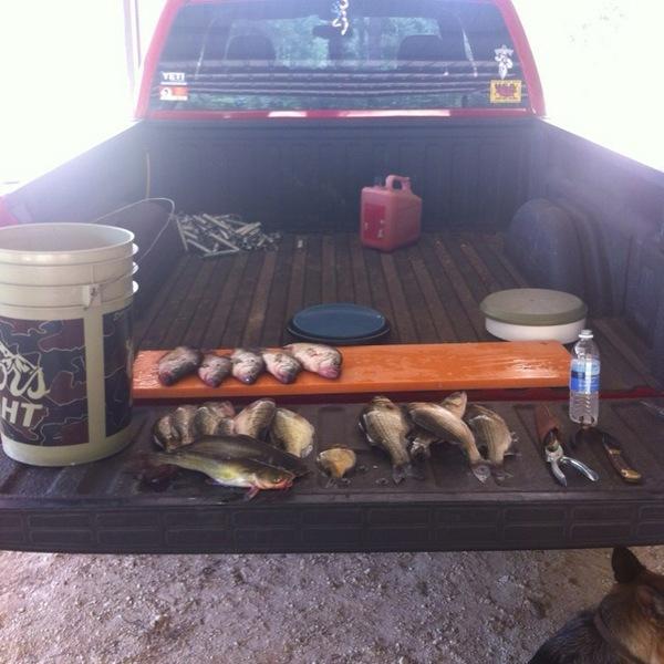 Black crappie lake bob sandlin tx fishingscout for Lake bob sandlin fishing report