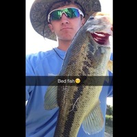 Mansfield Ponds Fishing Report 04/30/2015