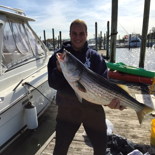Sandy Hook Bay Fishing Reports Fishingscout Mobile App