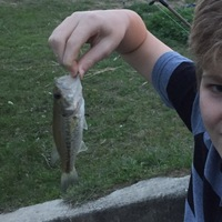 Baytown Ponds Fishing Report 03/01/2017