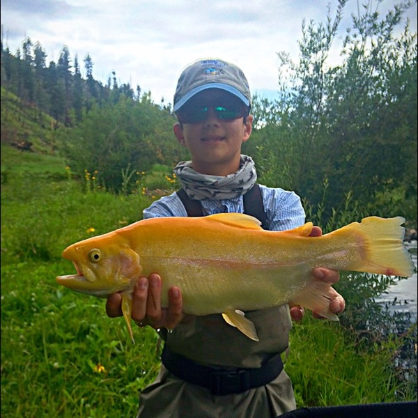 Fishingscout mobile app new mexico fishing reports for New mexico fishing