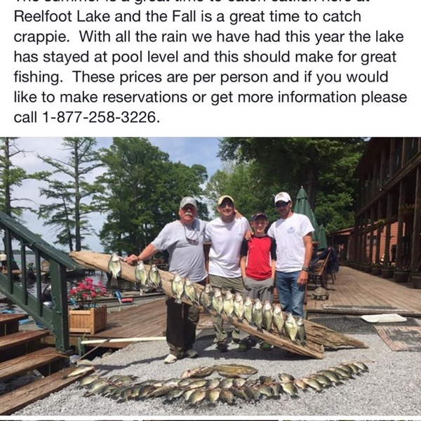White crappie reelfoot lake tn fishingscout for Reelfoot fishing report