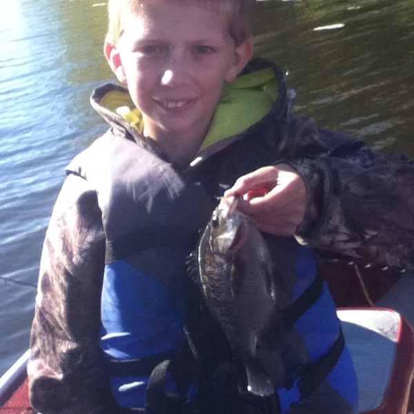 Bluegill sunfish lake onalaska wi fishingscout for Lake onalaska fishing report