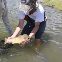 Other Freshwater Fishing Report 08/19/2016