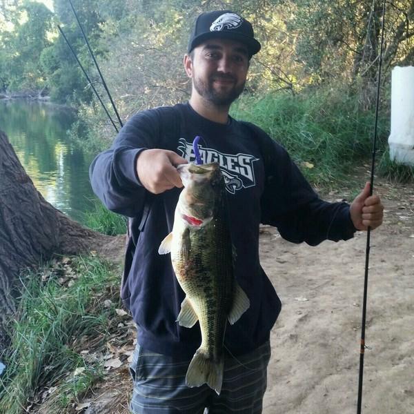 Lodi lake fishing reports fishingscout mobile app for Lake silverwood fishing report