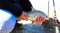 Lake Livingston Fishing Report 03/15/2017