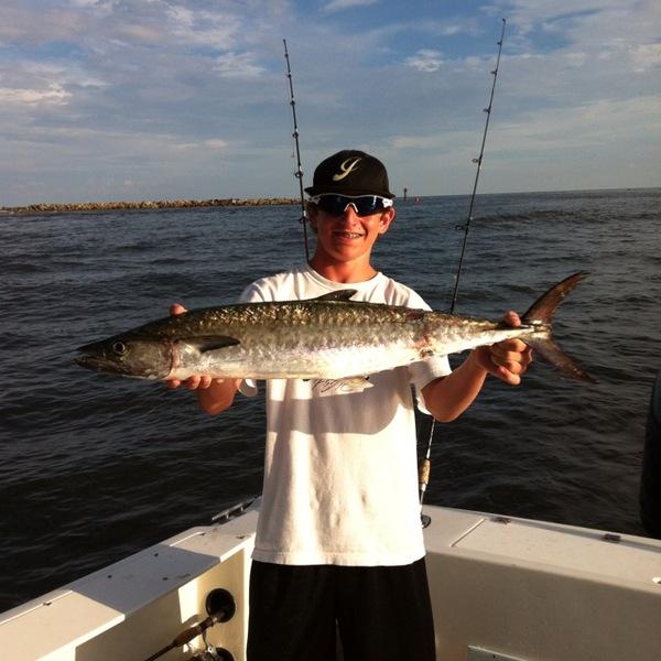 King mackerel orange beach al fishingscout for Orange beach fishing report