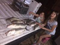Canyon Lake Fishing Report 11/20/2016