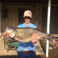 Centerville Ponds Fishing Report 06/25/2015