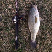 Marine Creek Lake Fishing Report 12/16/2015