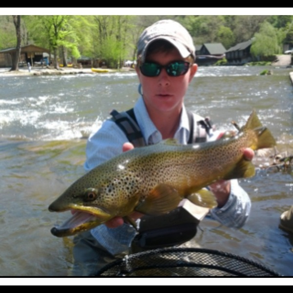 Brown Trout Nantahala River Nc Fishingscout