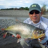 Other Freshwater Fishing Report 06/01/2016