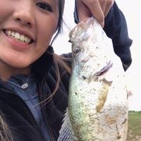 George Bush Park Ponds Fishing Report 04/28/2017