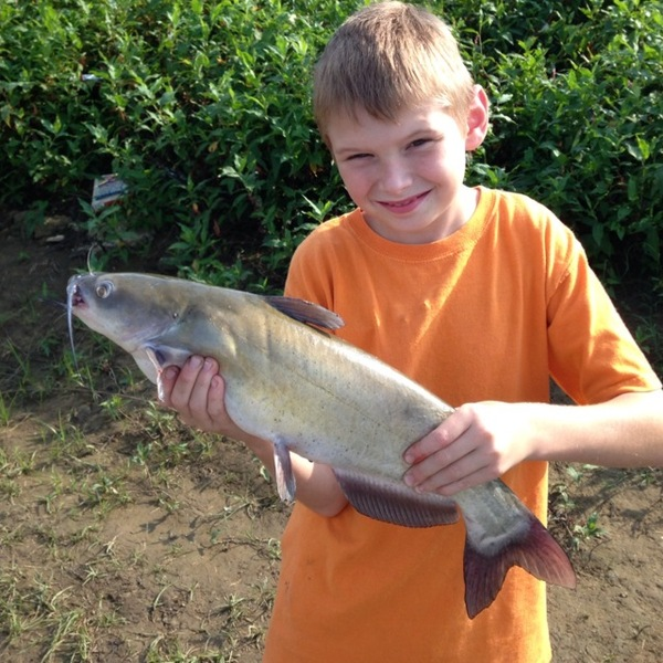 West ohio river fishing reports fishingscout mobile app for Ohio fishing report