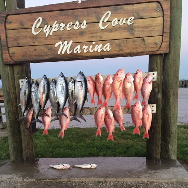 Venice  Fishing Report 03/19/2017