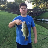 Highland Park Ponds Fishing Report 06/24/2016