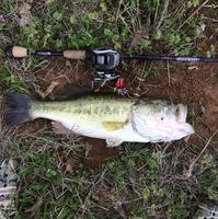 Aubrey Ponds Fishing Report 03/30/2015