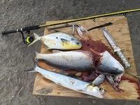 Upper Laguna Madre Fishing Report 08/17/2016