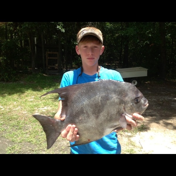 Edisto river fishing reports fishingscout mobile app for Lake greenwood fishing report