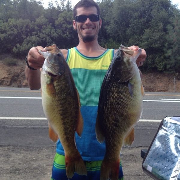 Squaw fish a run of squawfish stranded in kelsey creek for Berryessa fishing report