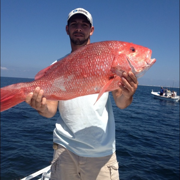 Other snapper east pensacola bay fl fishingscout for East bay fishing report