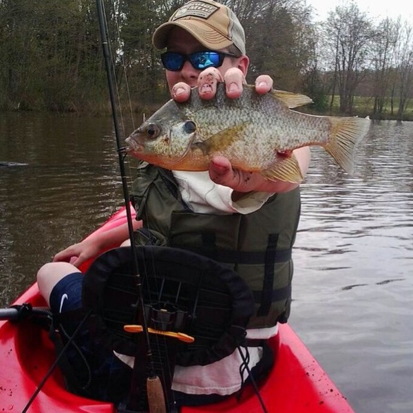 Curtis lake fishing reports fishingscout mobile app for Otter creek fishing report