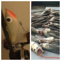 Upper Laguna Madre Fishing Report 02/09/2015