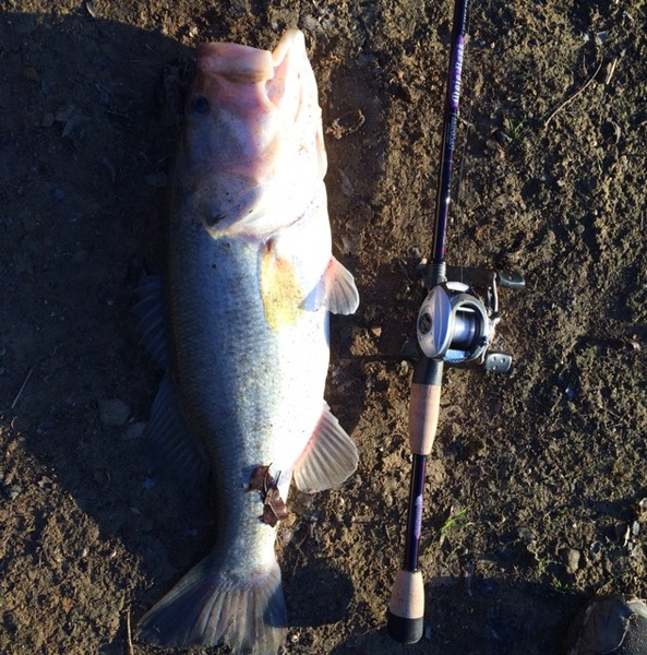 Aubrey Ponds Fishing Report 12/28/2014