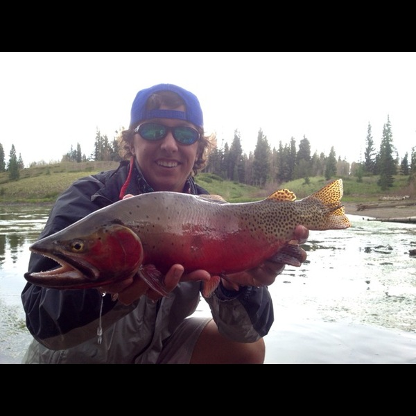 Other Freshwater Fishing Report 07/06/2013