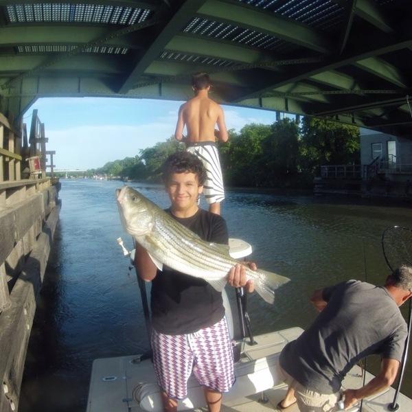 Striped bass delaware bay de nj fishingscout for Fishing report nj